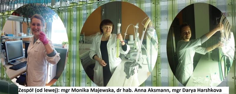 Zespół dr hab. Anny Aksmann