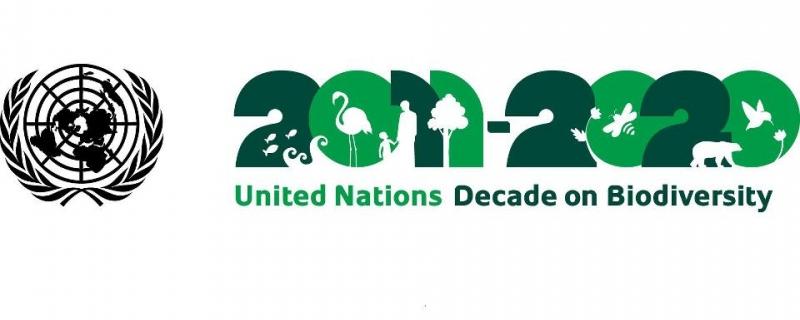 Biodiversity logo