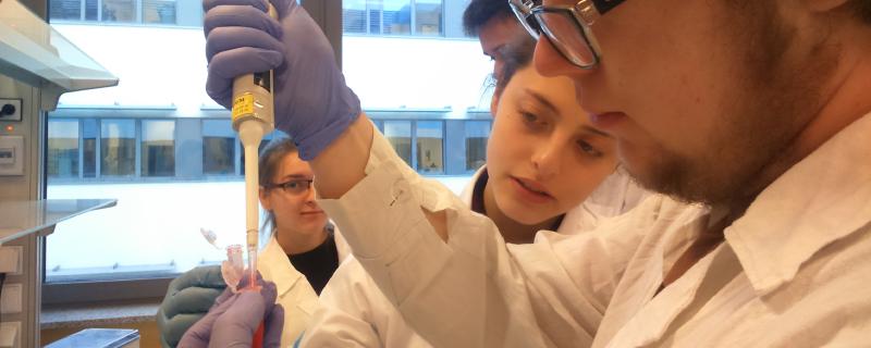 Programy edukacyjne Wydziału Biologii