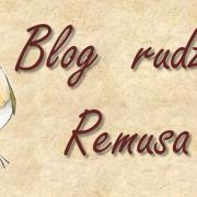 Blog rudzika Remusa