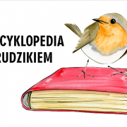 Encyklopedia z rudzikiem