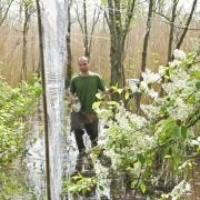 Kontrola sieci ornitologicznych w Terenowej Stacji Wędrówek Ptaków Bukowo-Kopań, fot. Jarosław Nowakowski