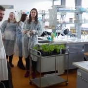 """Katedra Fizjologii i Biotechnologii Roślin - warsztaty """"Naucz się robić rośliny GMO"""""""