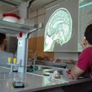 """Uczniowie I&#160;LO w&#160;Nowym Dworze Gdańskim na warsztatach """"Co w&#160;głowie piszczy - mózg pod lupą i&#160;mikroskopem""""<br"""