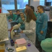 """Uczniowie XII LO wGdańsku na warsztatach """"Barwienie iobserwacja preparatów komórek bakteryjnych"""" <br /> fot. Beata B"""