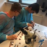 Zajęcia dla uczniów IX LO w Gdyni