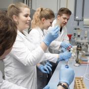 kierunek Genetyka i Biologia Eksperymentalna