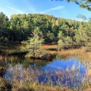 kierunek Ochrona Zasobów Przyrodniczych